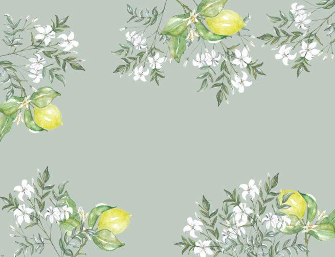 vade-sencillo-citrus
