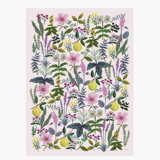 papel-de-regalo-herb-garden-rifle-paper-co